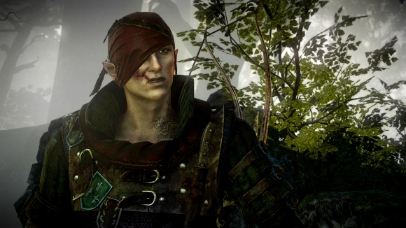 The Witcher 2: Assassins of Kings (360, PC) 360 Launch Announcement - Screenshot 5